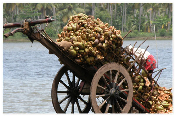 Alleppey, the Coir Capital of India