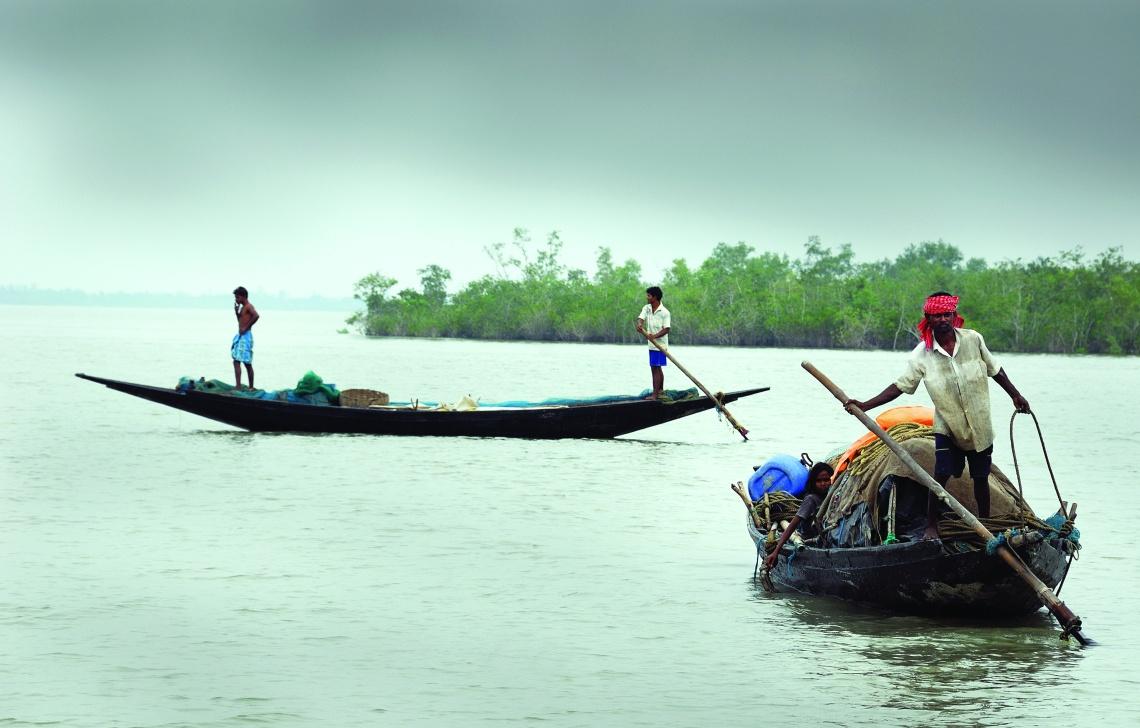 Sundarban, the land of mangroves